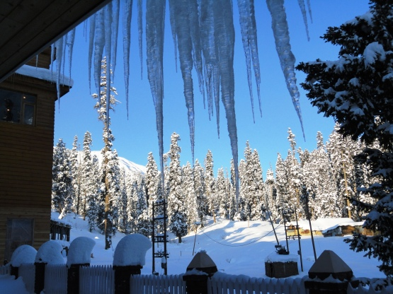 A Winter Morning in Gulmarg