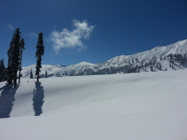 Guided Ski Packages