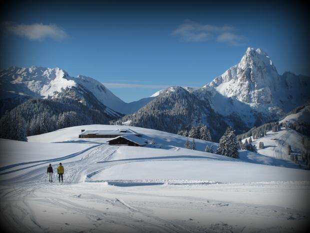 Pulverschnee Kurse Schweiz